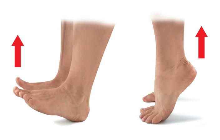 Cviky pro plochou nohu 01